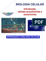 Aula 2 - Biologia celular (Parte 1) - Introdução, células procariontes e eucariontes.pdf