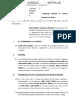 DEMANDA DE TENENCIA.doc