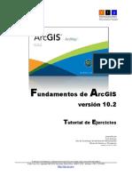 Ejercicios ArcGIS 10.pdf