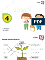 Ns2 m2 u4 Presentation