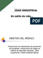 Estilo de Vida en La Industria (Seguridad)
