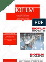 biofilm (1)
