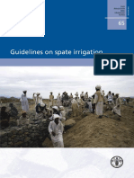 2010_Guidelines_on_spate_irrigation.pdf