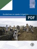 2010_Guidelines_on_spate_irrigation.pdf