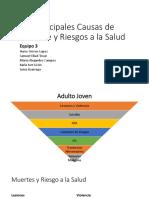 ClaseMuertesAdultos.pptx