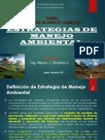 1. Estrategias de Manejo Ambiental