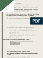 Presentación1 (auditoria GUBERNAMENTAL FINANCIERA - ejecucion)