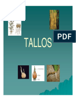 Talloyraiz2011 141028103315 Conversion Gate02
