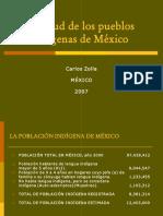 La Salud de Los Pueblos Indigenas-Definitivo(1)