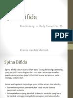 Ppt Spina Bifida