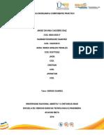 QUIMICA_INORGANICA_COMPONENTE_PRACTICO_A.docx