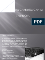 85697081-Tridilosa
