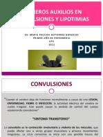 PRIMEROS AUXILIOS EN CONVULSIONES Y LIPOTIMIAS.UPV.pdf