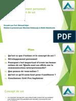 CIP Et Développement Personnel_Estime Et Concept de Soi (1)