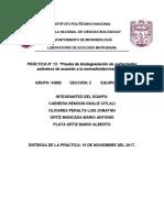 REPORTE 13 Surfactantes.asd