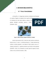 fresitas.pdf
