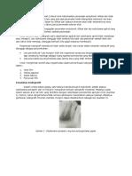 evaluasi radiografi.docx