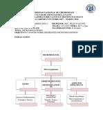 RESUMEN MICRO 4.docx