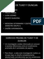 37313289-diseno-duncan-tukey-trabajo-terminado.pdf