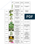 Cuadro Plantas Med