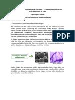 Aula Características gerais dos fungos.docx