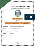 Fracturas Causales y La Concausa