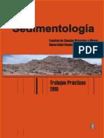 Sedimentologia - UNP - Argentina.pdf