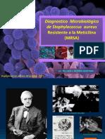 Staphylococcus aureus MRSA 28 Octubre 2017