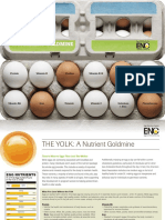 Egg Yolk Brochure