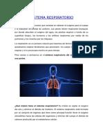 SISTEMA RESPIRATORIO CAMILA.docx