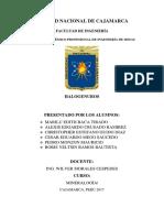 INFORME MINERALOGÍA BORIS.docx