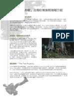 捐款就送  台灣杉等身照海報介紹