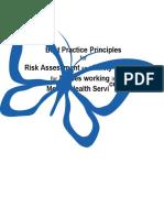 Best Principles Risk Assessment