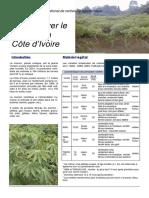 cultiver_manioc.pdf