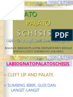 230936049 Labio Palato Gnato Scissis (1)