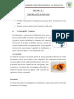 PRACTICA-DE-TERNURIZACION.docx