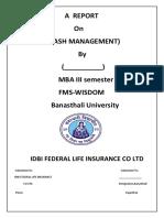 Report on Cash Management