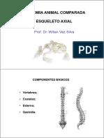 Osteologia - Axial.pdf