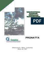 20061127153451_Evaluacion Sistema de Produccion de Platano
