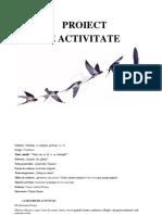 Plan de activitate 4.docx