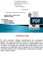 coctel lacteo.pptx