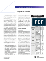 Asignacion familiar.pdf