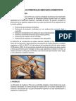 EVOLUCIÓN-DE-LOS-PRINCIPALES-MERCADOS-DOMÉSTICOS.docx
