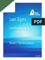 Lean Sigma Módulo 1