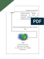AMANDA.pdf