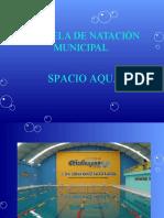 Proyecto de Natacion