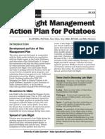 Potato Top