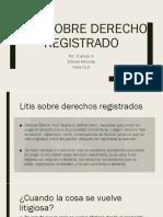 Litis Sobre Derech Registrado