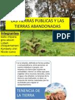 LAS TIERRAS PUBLICAS Y LAS TIERRAS ABANDONADAS.pptx