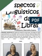 parametros da libras.pdf
